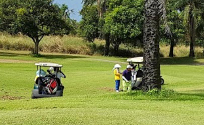 Mountain Shadow Golf Club